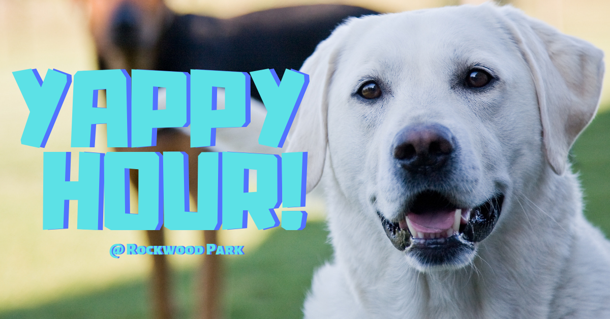 Yappy Hour at the Rockwood Park